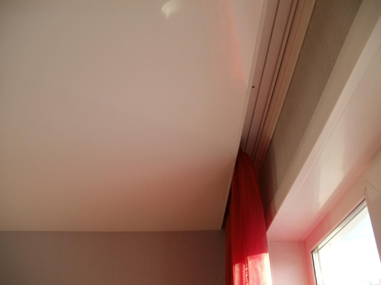 Гидрангея домашняя уход в домашних условиях 412